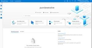Main Azure Purview Portal